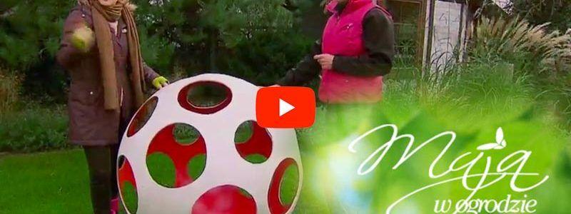 Betonosfera w programie Maja w ogrodzie